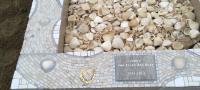 Gedenkteken Henk Vedder schelpensteen