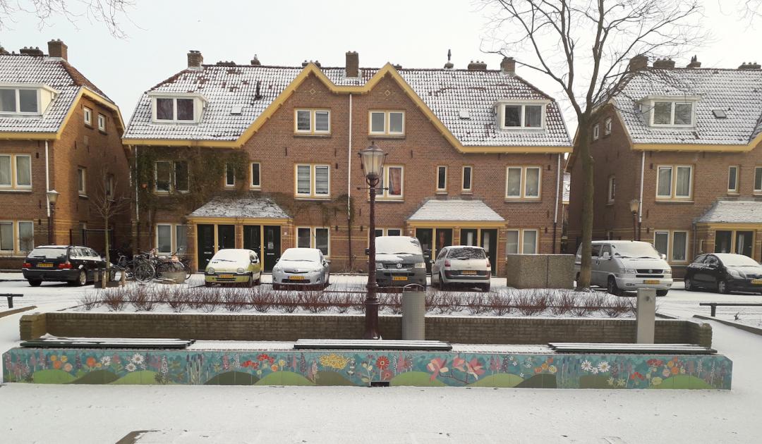 lupineplein-mozaiekmuurtjes-sneeuw vorstbestendig kleur in de winter